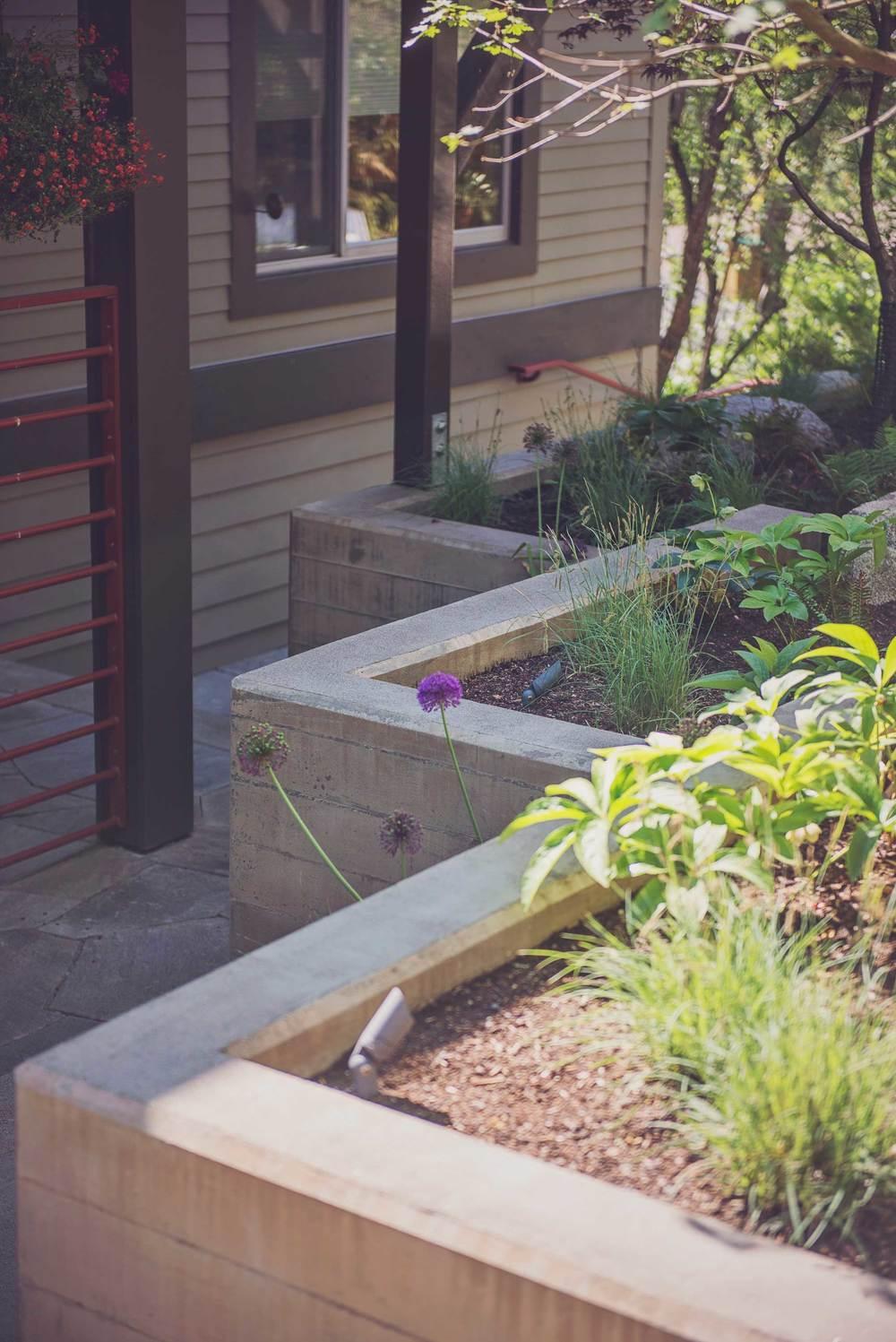 Custom Landscape Design to Match Building Architecture with Modern Landscape Lighting.jpg