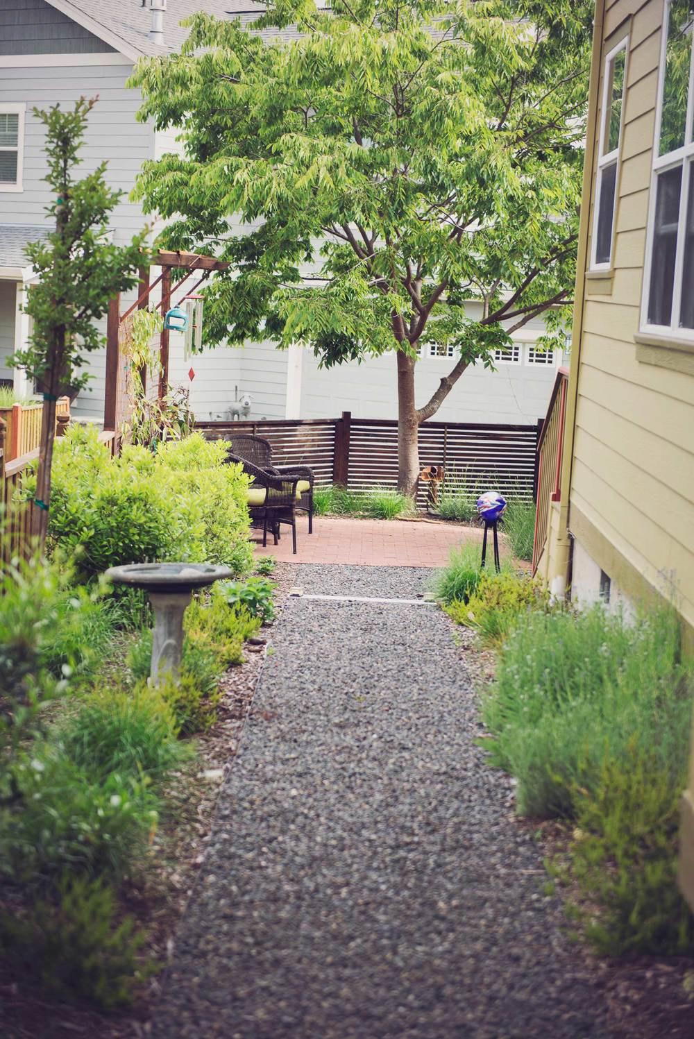 Bird and Butterfly Garden Design with Gravel Pathway and Cedar Fencing in Ashland.jpg