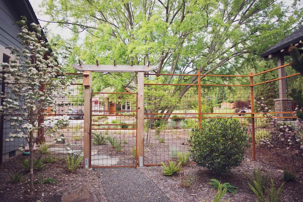 Steel Fence Design with Cedar Arbor and Bird-Friendly Garden.jpg