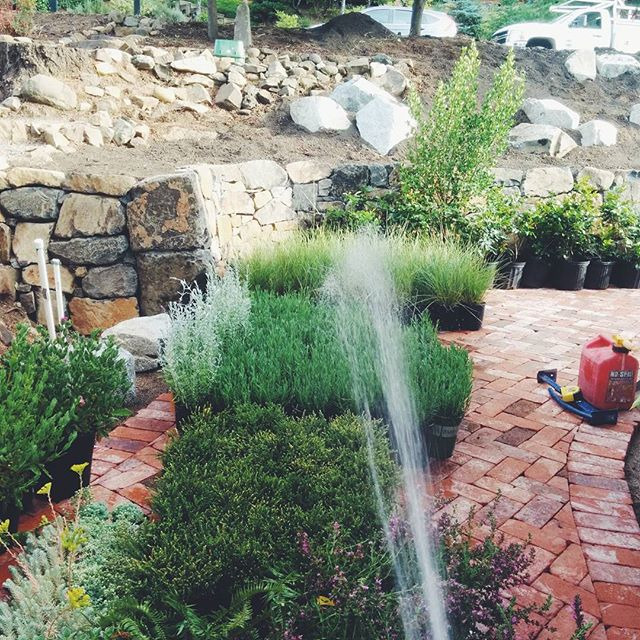 Tucking in a few baby plants the evening before planting day.  Fun little project w/ recycled brick, locally-quarried basalt retaining walls, granite boulders and high-efficiency irrigation.  @_rachio @valleyviewnursery #plantz, #nativeplants, #granite, #droughttolerant, #ecologicaldesign, #landscaping