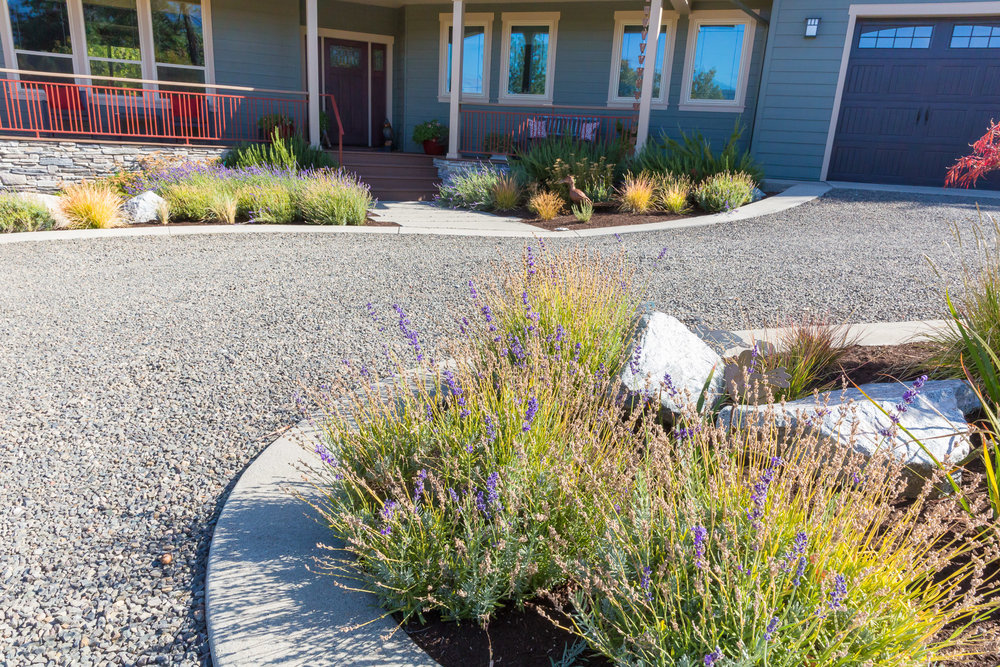 Gravel Drive + Concrete Ribbon + Entrance Path + Drought Tolerant Garden
