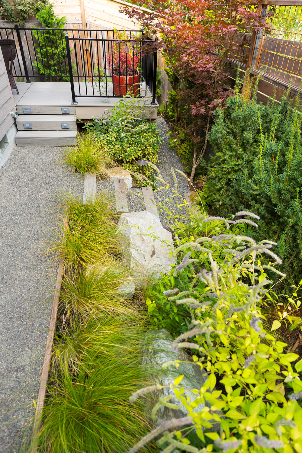 Narrow Back Yard Gravel Path + Timber Steps + Dense Perennial Garden
