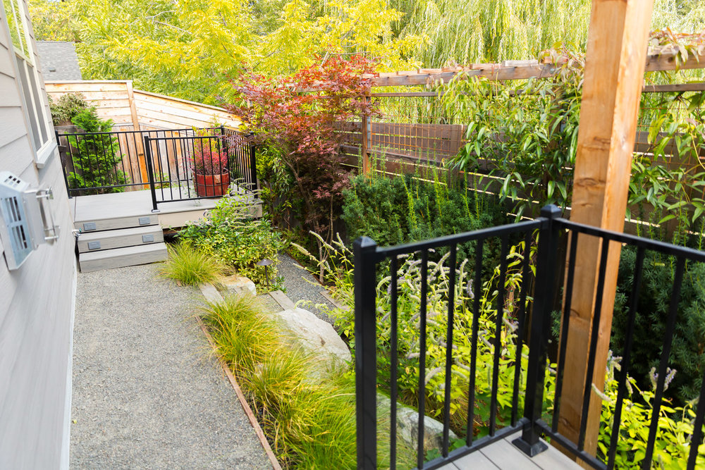 Narrow Back Yard + Fence Extension Trellis + Privacy