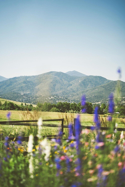 Wildflower Garden + Mountain Views + Scenic Water-wise