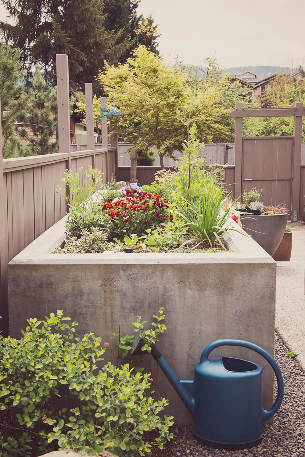 Concrete Bench Cap Seating + Patio