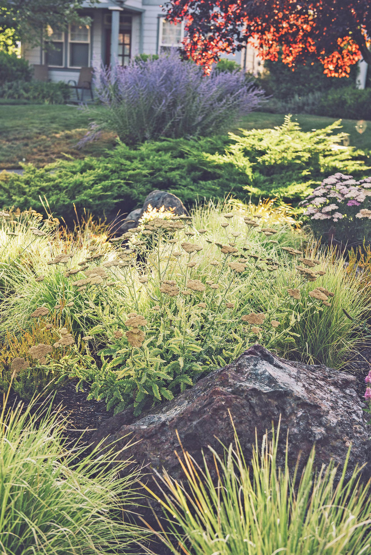 granite boulders + bunch grass + yarrow + PNW perennial garden