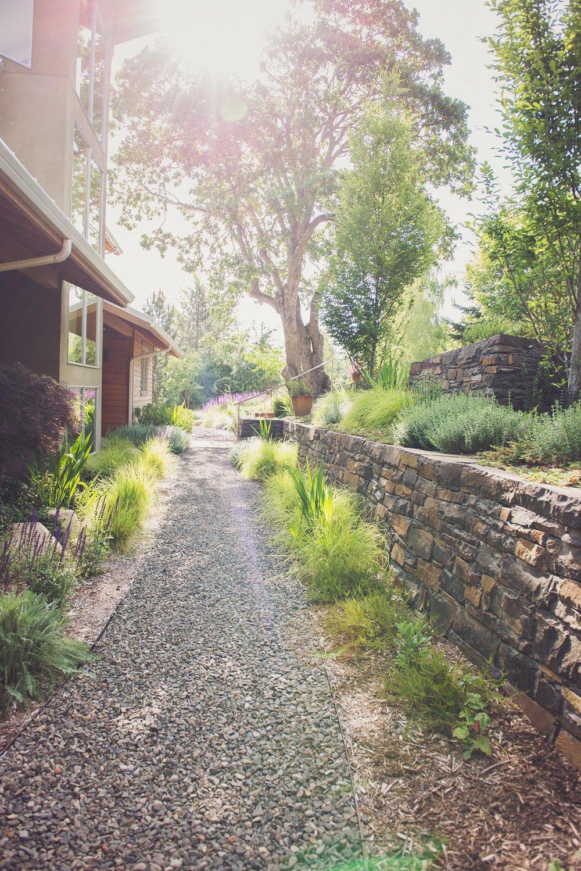 Terraced perennial garden + stacked basalt rock wall + rhododendron + south facing windows + salvia + japanesen maple + bunch grasses 2
