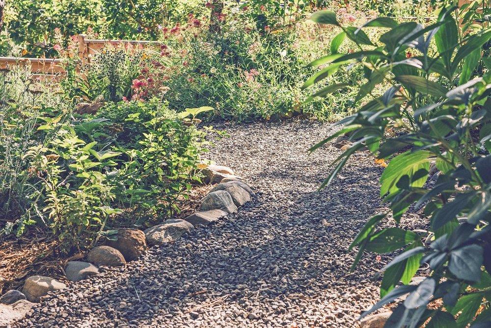 Perennial garden flower + bee garden + local rock lined crushed basalt path + cedar privacy fence + lush flower garden + colorful landscape