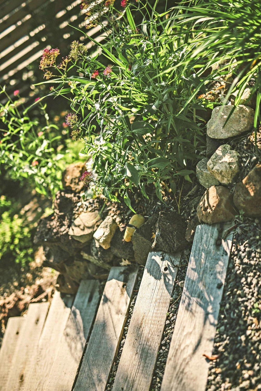 timber and gravel stairs descending + local rock + pollinator garden + red velarian + Jupiter's beard