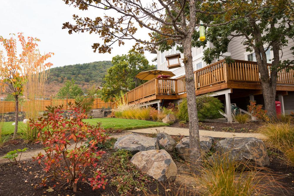 Native Oak + Basalt Boulders + Decomposed Granite Pathway + Lawn Edge