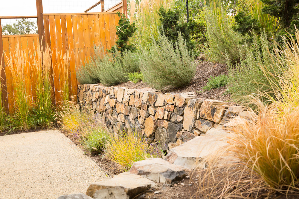 Roseymary + Flase Cypress + Stacked Rock Stone Basalt Wall+