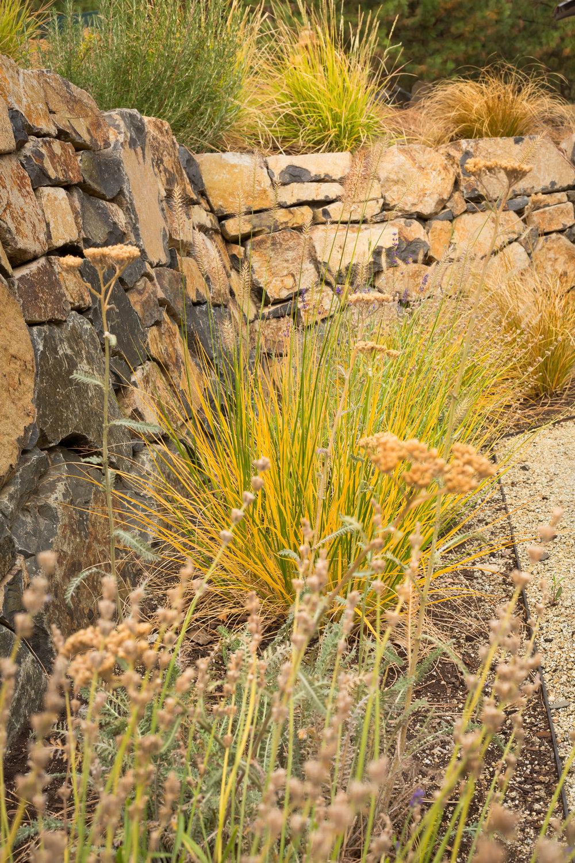 Stacked stone wall + Dwarf Fountain Grass + All-Season Perennials + Fall