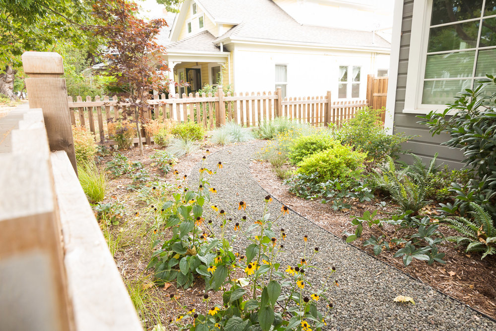 Steel-edged gravel path + perennial garden