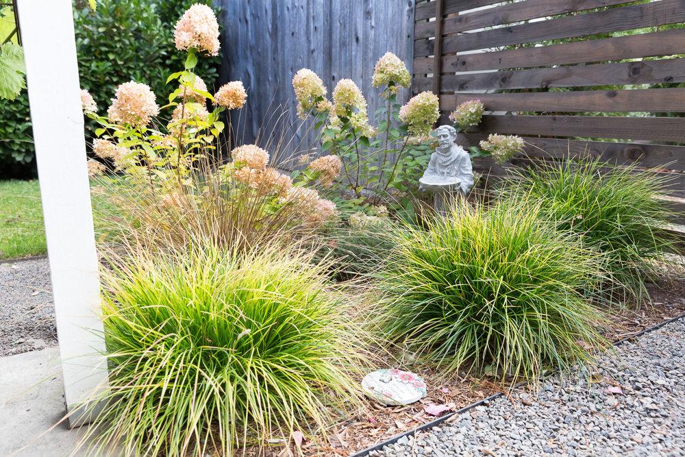Vibrant Perennials + Plantings + Gravel Driveway
