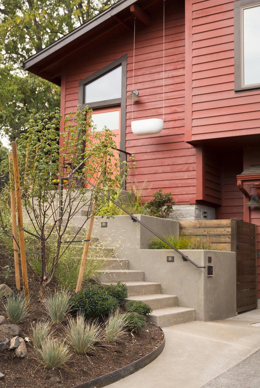 Modern Concrete Entryway + Deer-Resistant Perennial Garden