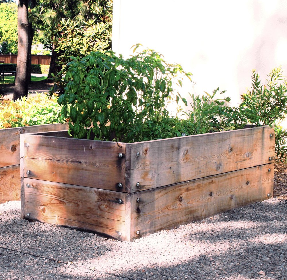4' raised cedar beds + Gravel patio + Utilitarian Landscape + Backyard Garden