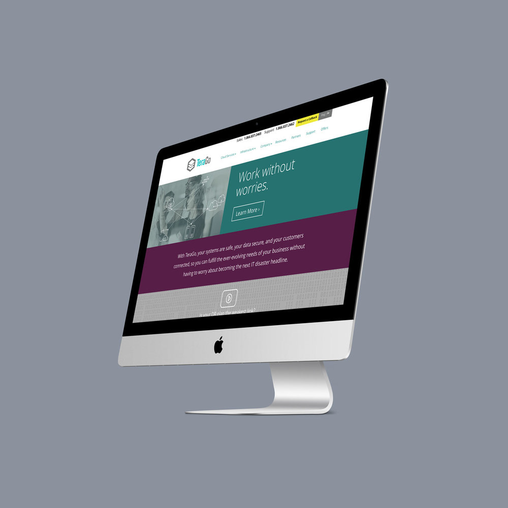 TeraGo - Responsive website