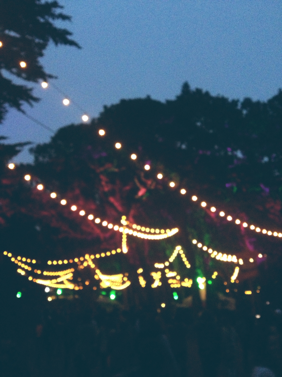 Outside Lands SF.jpg
