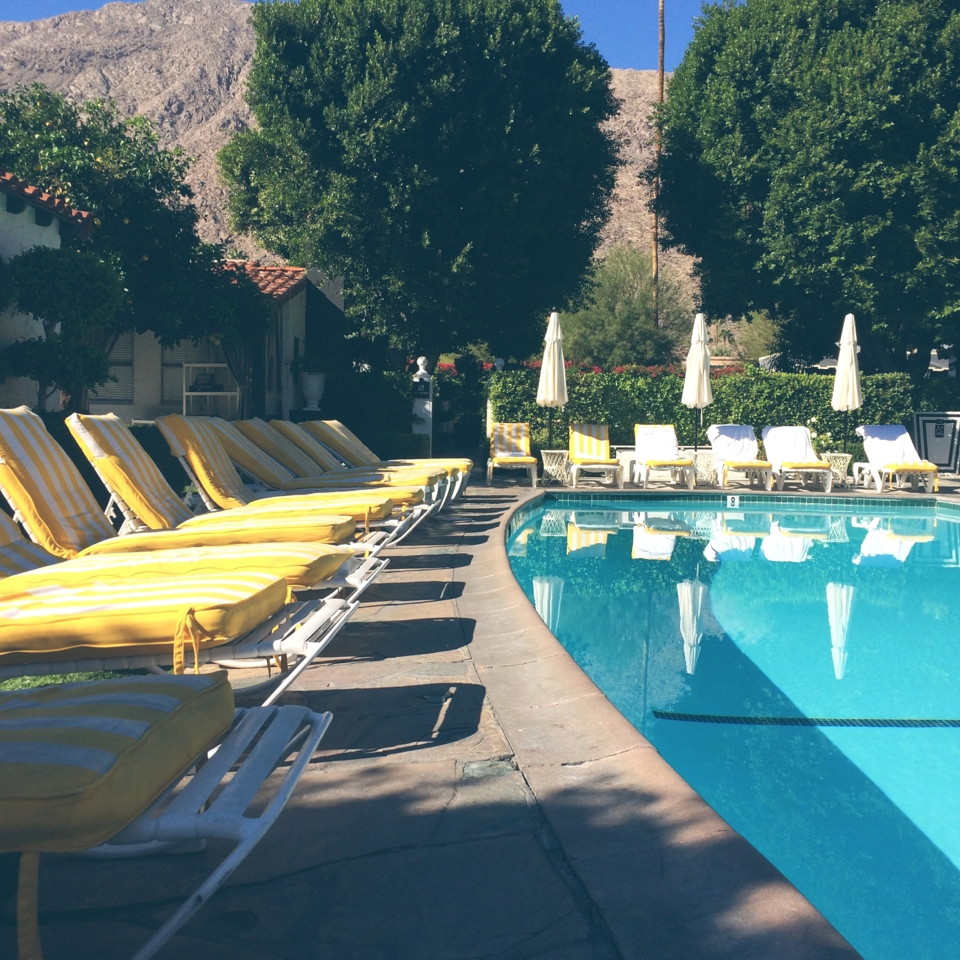the viceroy palm springs.jpg
