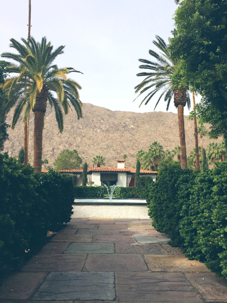 the viceroy palm springs .jpg