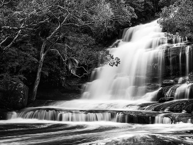Finally, it's great to see #somersbyfalls flowing. It's been a while. I thought a bit of black and white treatment would show off the water flow. --------- #MonochromeAustralia #BnW_Australia #Mono #bnw #waterfall #Gosford #CentralCoastNSW #moody #water #trees #canonaustralia