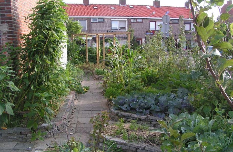TuinKatwijk16.jpg