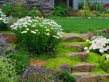 easy-landscaping-ideas.jpg