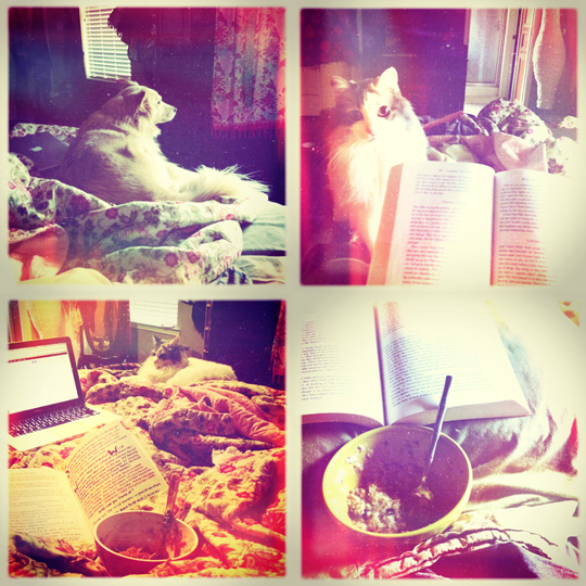 in+bed.jpg