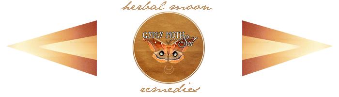 gypsy moth sol banner.png