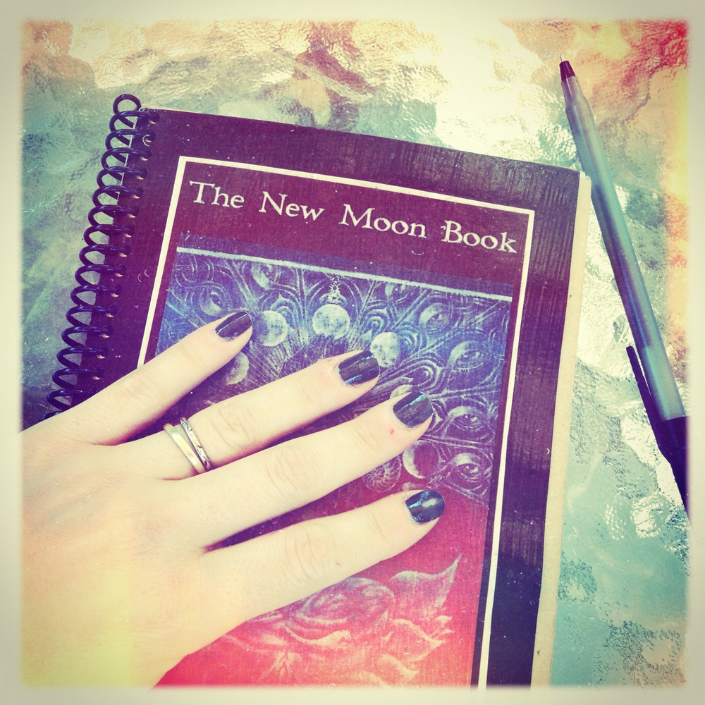 new moon book from aquarius nation.JPG