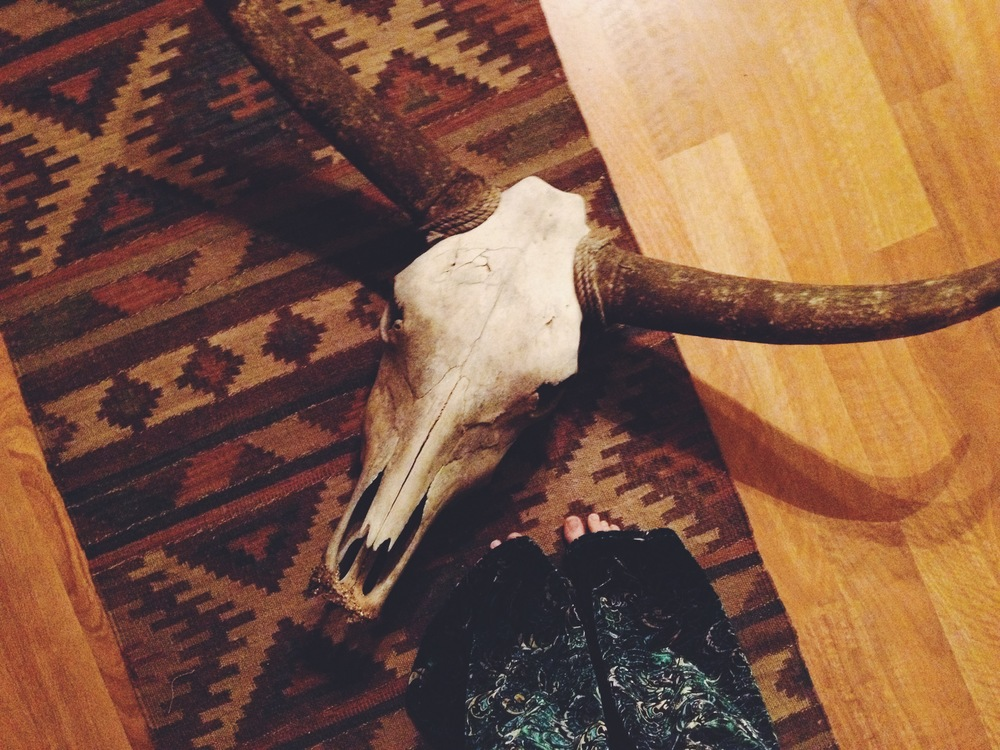 Delilah's long lost lover found her... now we have two longhorns skulls!  (a sweet gift from our neighbor)