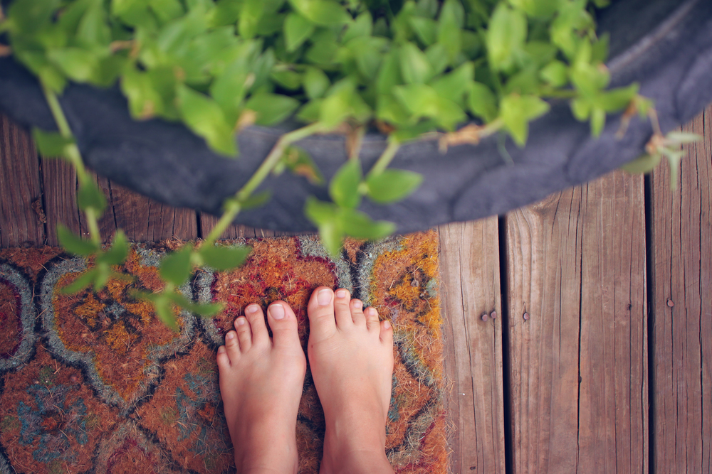 toes & plants