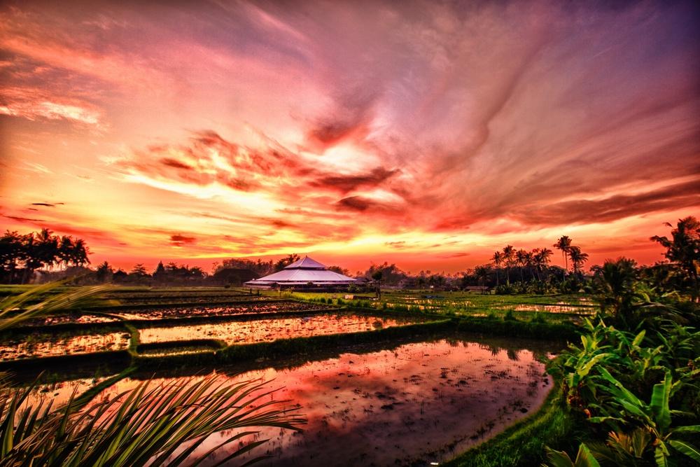 Bali 1 (1).jpg