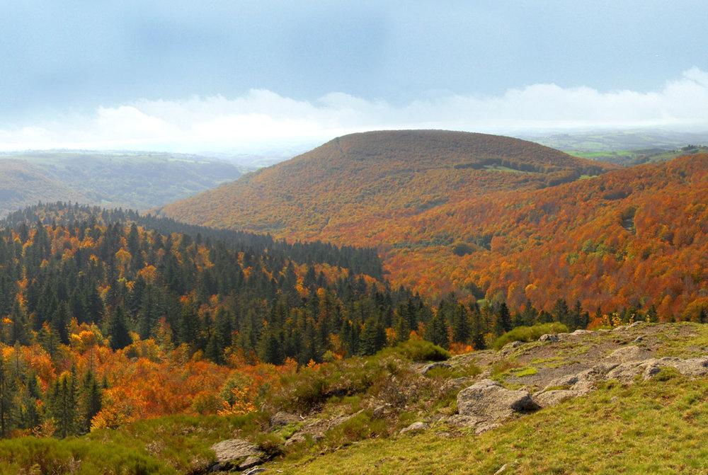 Parc Naturel Regional de l'Aubrac - 0.jpg