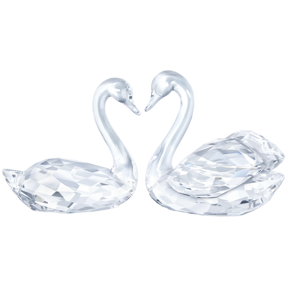 swan couple.png