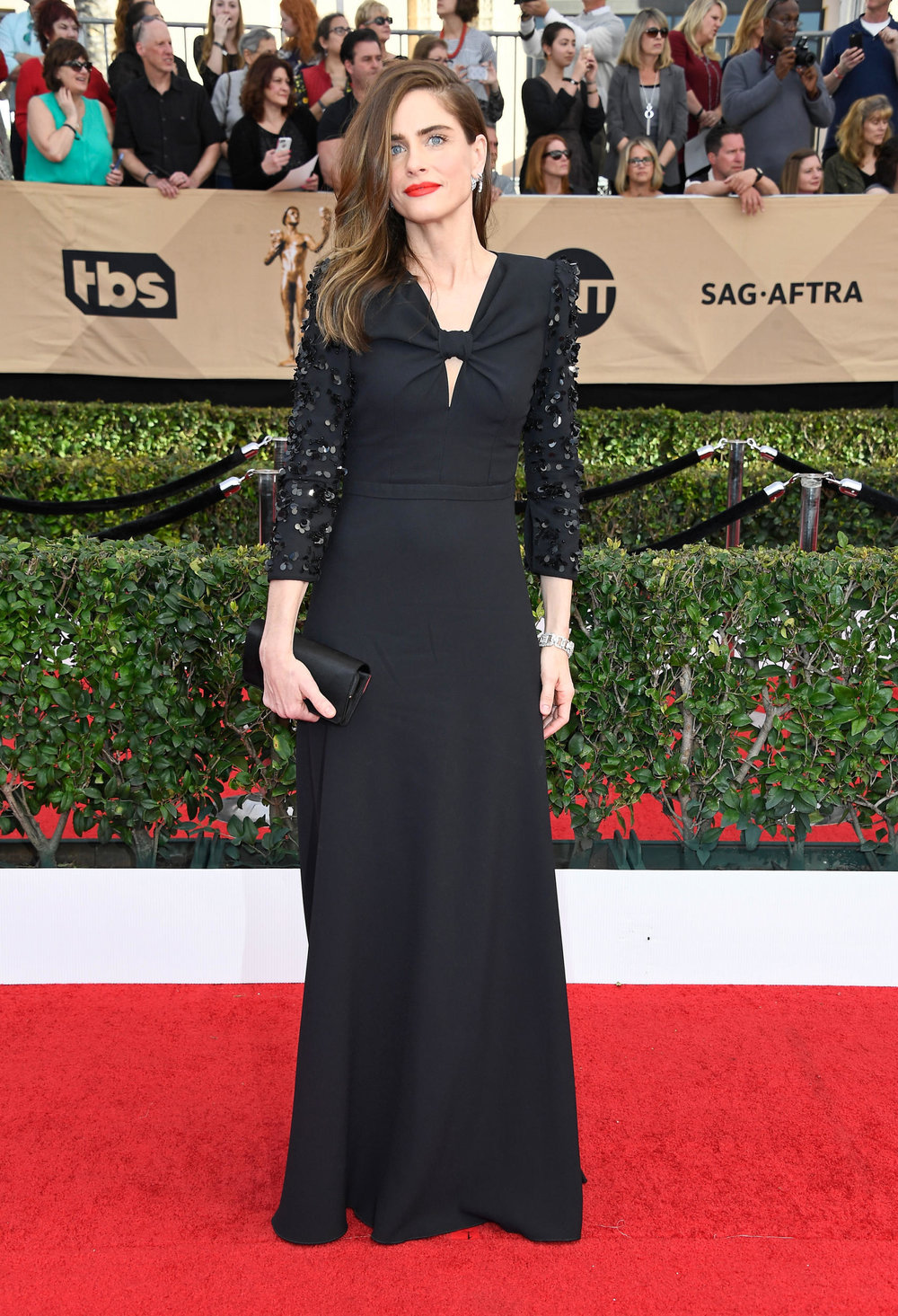 Amanda Peet in Michael Kors at the 2017 SAG Awards Photo: Frazer Harrison/Getty Images