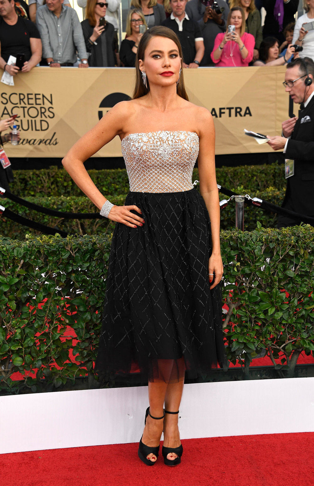 Sofia Vergara in Zuhair Murad at the 2017 SAG Awards Photo: Frazer Harrison/Getty Images