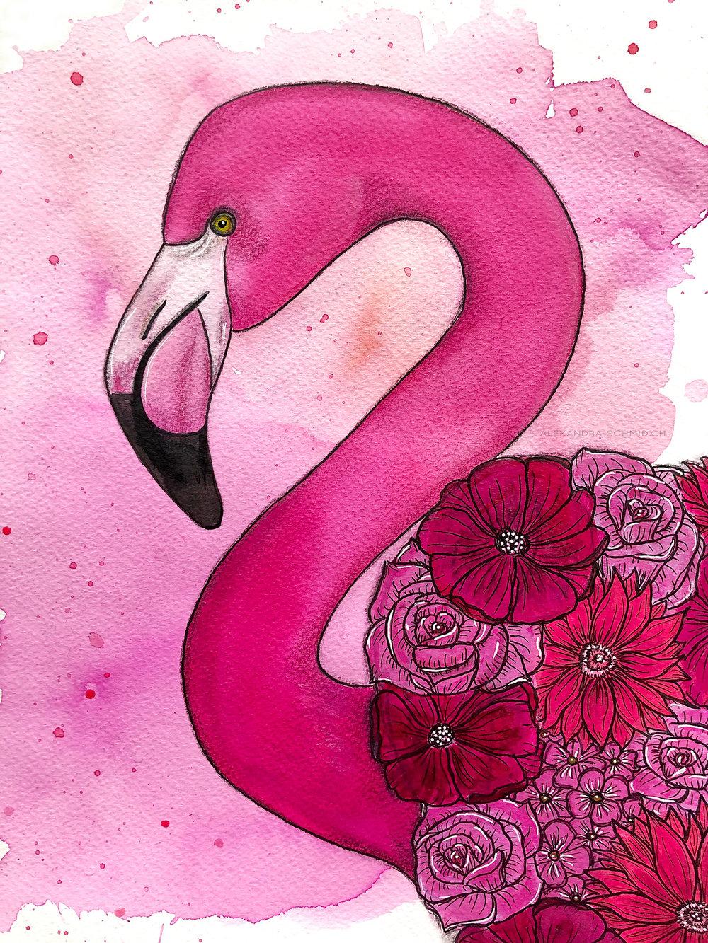 AS_FlamingoInsta.jpg