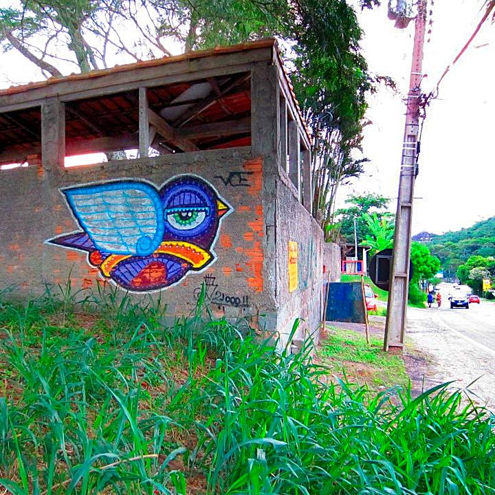 Pássaro: assinatura de Marcelo Barnero nos muros abandonados.