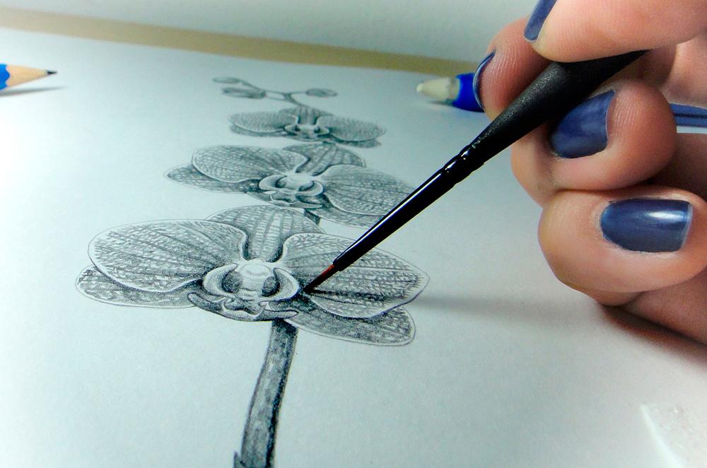 Na foto, a artista Lu Mori trabalhando na obra Vermelha Riscada, série concreção, da coleção   Orquidofolia  .