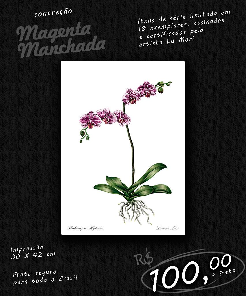 ok-2-magenta-manchada.jpg