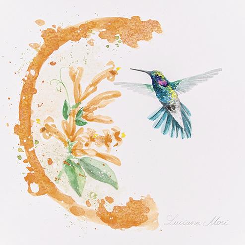 14. Colibri serrirostris & Pyrostegia venusta