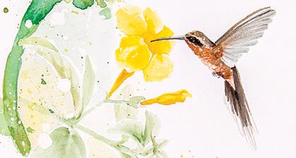 hummingbirds-watercolor-Santa-Fe-NM-brazilian-LU-MORI-1.jpg