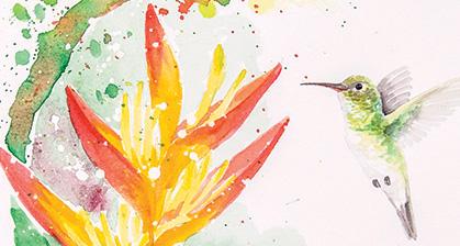 hummingbirds-watercolor-Santa-Fe-NM-brazilian-LU-MORI-2.jpg