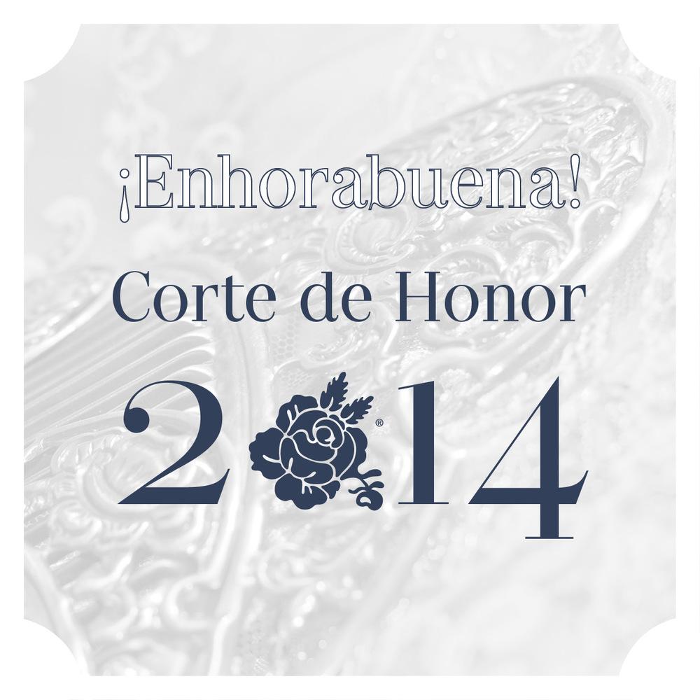 corte-de-honor-2014-valencia.jpg