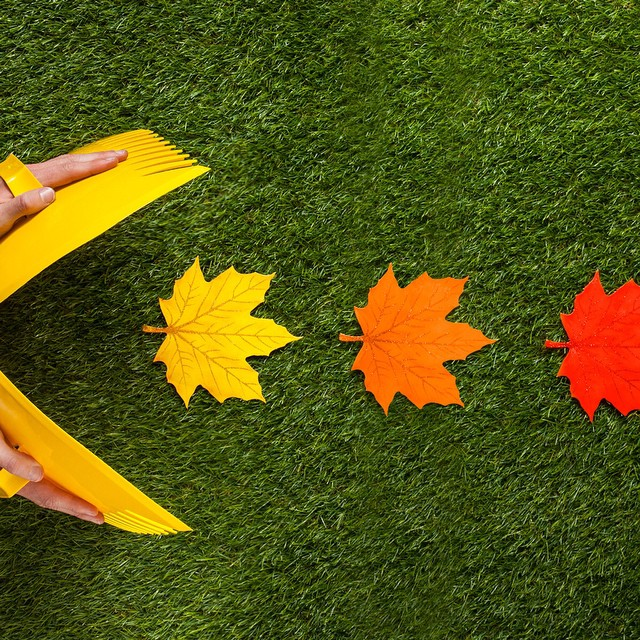 #Fall   tip: Leaf rake hands can easily turn yard work into yard games!