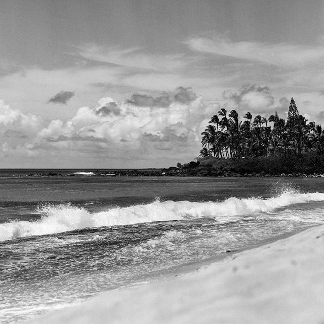 Missing #oahu. My brain is on a mental vacation today. I really need to snap it back.  #igdaily #instagood #instadaily #filmisnotdead #film #blackandwhiteisworththefight #bw