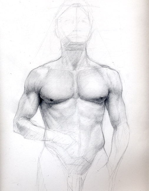 torso-study.jpg