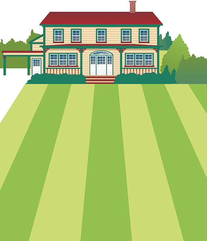 House illustration.jpg