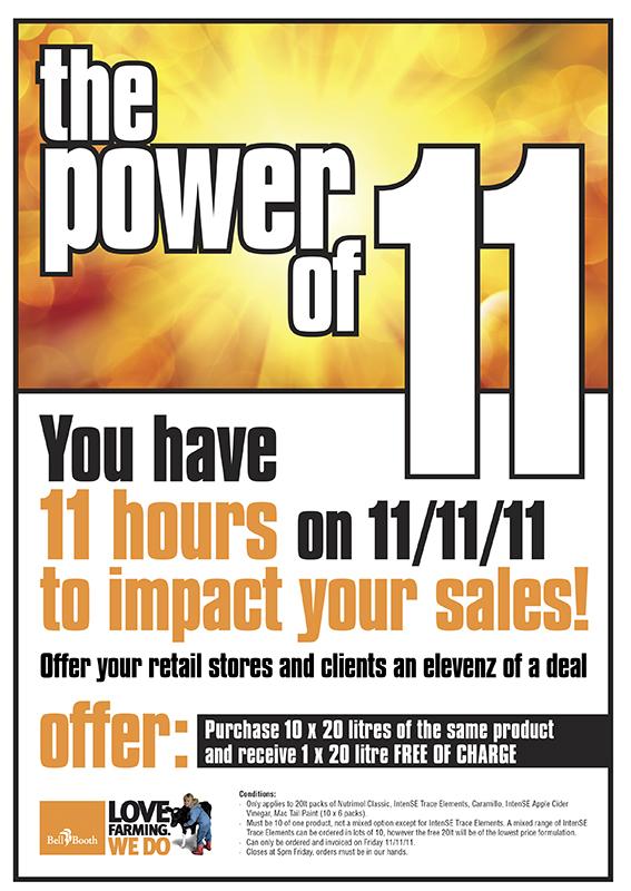 Power of 11 A4 flyer2.jpg